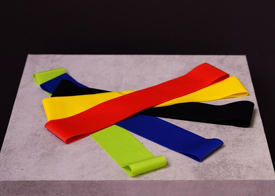 fascia elastica